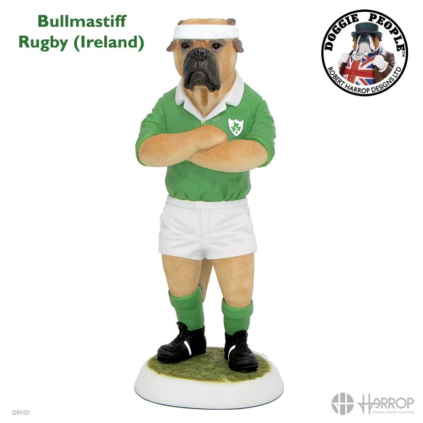 Bullmastiff - Rugby - Ireland