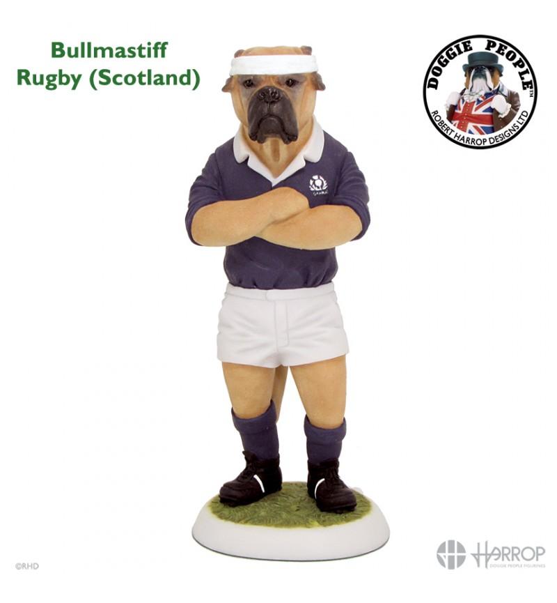 Bullmastiff - Rugby - Scotland