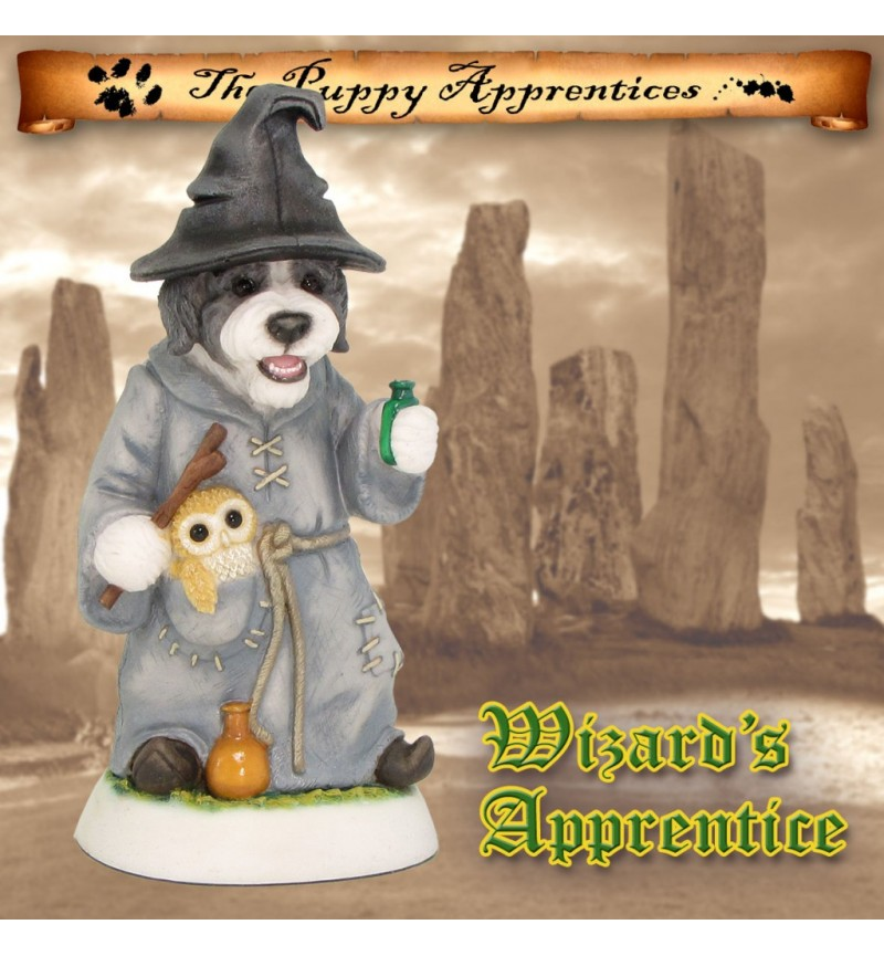 Bearded Collie Puppy - Wizard's Apprentice