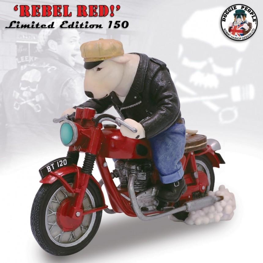 WHITE BULL TERRIER on a BONNEVILLE (LE 150) 'REBEL RED'